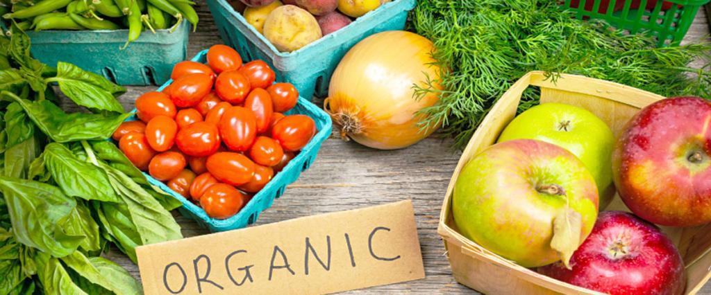 frutos-legumes-biologicos